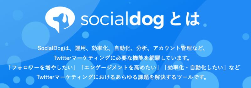 socialdogとは