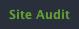 Website Auditor site auditアイコン