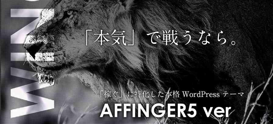 affinger5イメージ